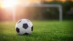 football222.jpg